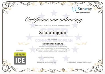 certificate template2